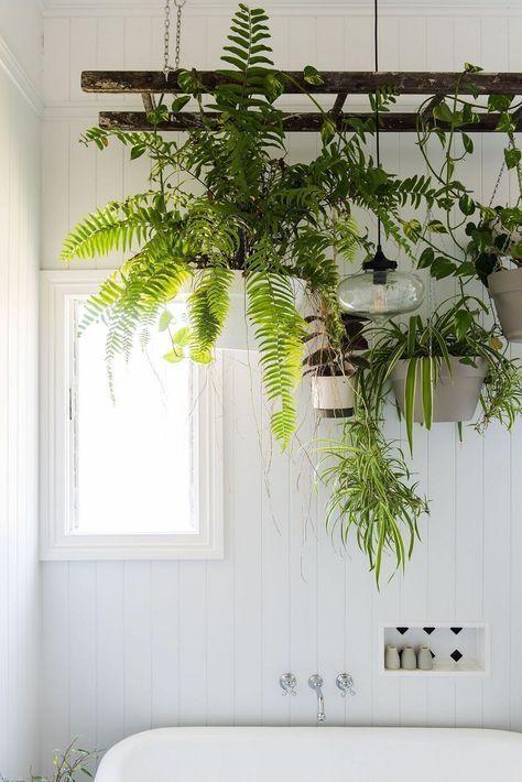 """Plants on a shelf above a bath in a bathroom"""